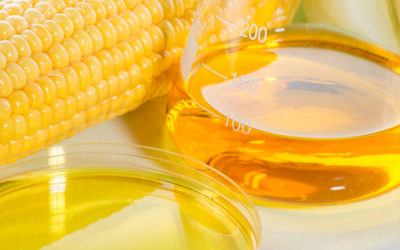 The Dangers of High Fructose Corn Syrup