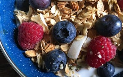 What is Dietary Fiber? Why is it so important?